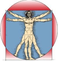 David Graham logo cropped 2 - vitruvian-man-davinci-200x210